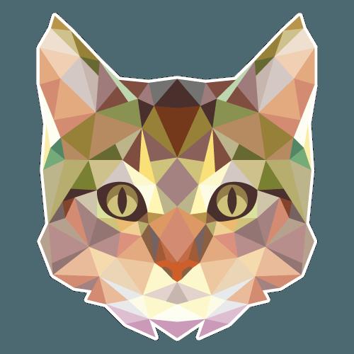 Gato Polígono